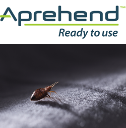 aprehend bed bug spray